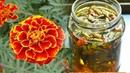 Улучшит зрение Лечит псориаз печень поджелудочную отвар бархатцев Не цветы а золото