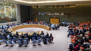 Middle East: The political situation in Syria - Security Council Open VTC