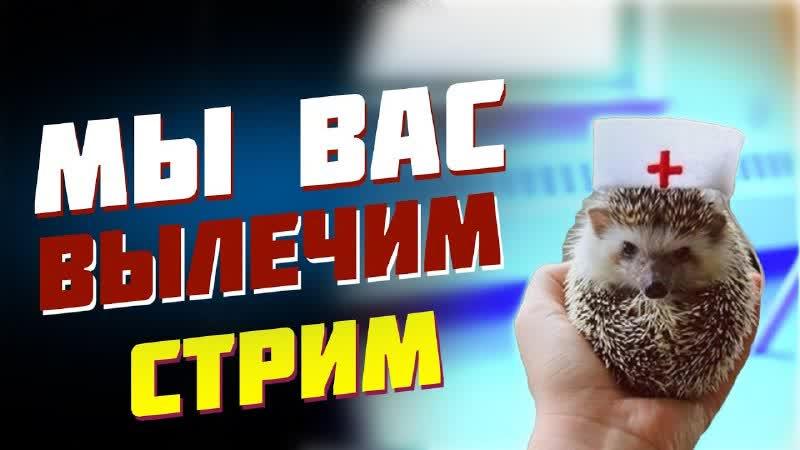 Ёжик Лисичкин Зараженный стрим 15 02 2020