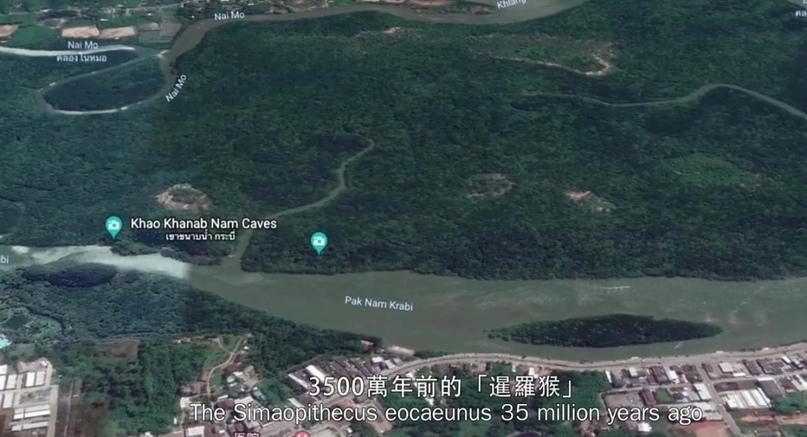 Уникальное открытие гигантского скелета в Таиланде - гиганта, возможно, убитого рогатой змеёй. YSe5BtFXd1I