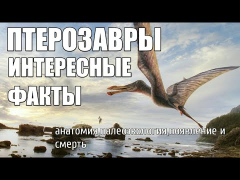 Птерозавры анатомия палеоэкология происхождение и смерть