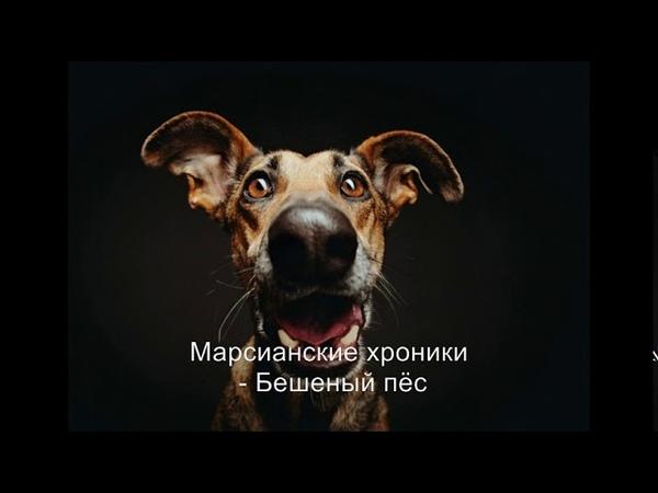 Марсианские хроники Бешеный пёс 1993 г