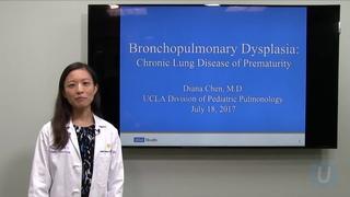 Bronchopulmonary Dysplasia: A Chronic Lung Disease of Premature Birth   UCLA Health