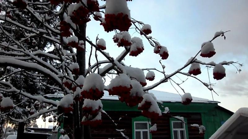 Тhe first SNOW: