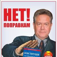 Голосование по поправкам в конституцию Путина