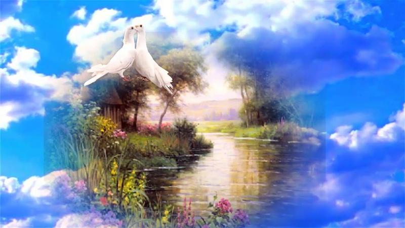 Пётр Лысенко Два голубка Бесконечно красивая песня о чистоте и верности о любви