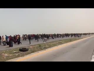 Новая миграционная волна