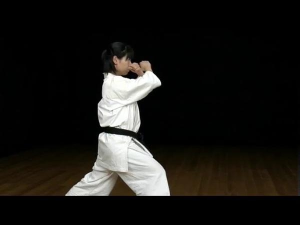 Taikyoku sokugi sono ichi