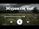 Ғашық қылып жүрсіңбе мына әлемді-SQ-Nightкараоке, текст, audio, сөзі