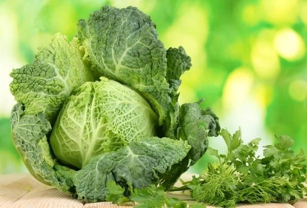 Савойская капуста  полезный овощ с приятным вкусом