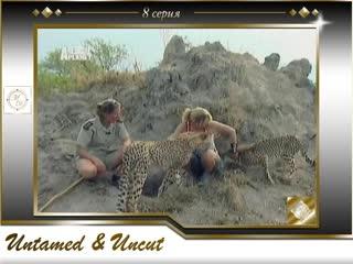 Дикие и опасные 8 серия Нападение гепарда / Untamed and Uncut 8 episode