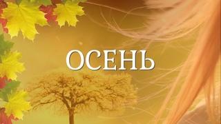 Осень. Осенняя зарисовка. Осеннее настроение