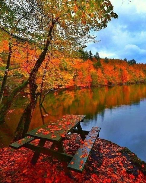 - Который час - Осень... (источник: gofazenda)