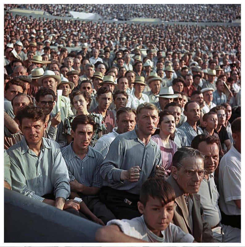 Болельщики на стадионе «Динамо» в Москве, 1956 год. Фотограф: Андрей Новиков.
