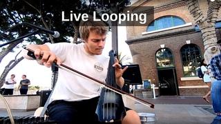 Boss RC-505 Loop Station - Multi-Instrumental Live Looping - Reinhardt Buhr