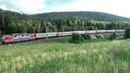 Поезда России на фоне красивой природы в Сибири