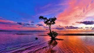ॐ Бхагавад Гита «Жемчужина мудрости Востока» аудиокнига