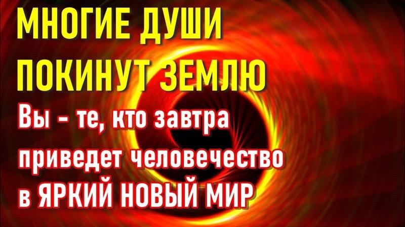 🔹Взгляд в завтрашний день Послание Архангела Михаила ченнелинг