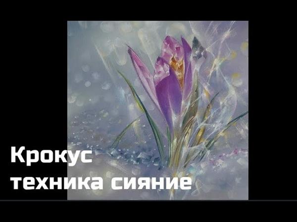 Техника сияние Крокус Александр Маранов