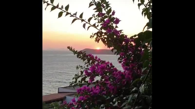 Bodrum gümüşlük akşamüstü begonvil x27ler arasından güneşin batışı kuşların cıvıltısı... günbatımı arionresorthotel