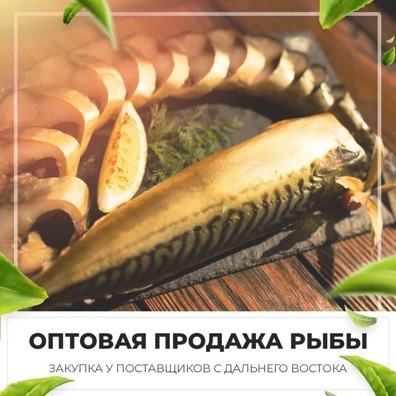 Лиды по 285 рублей на покупку рыбу оптом, изображение №11