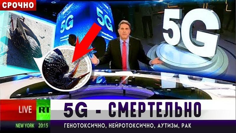 5G СМЕРТЕЛЬНО ОПАСНА⚠️В России этого не скажут Конгресс США против сети 5G