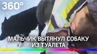 Бездомная собака провалилась в туалет, а смелый школьник достал её отуда