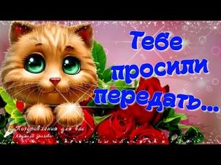 🌸☕️ Доброе утро! 🌸Тебе просили передать... Желаю огромного счастья!🌸 Позитивчик для друзей!