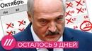 Лукашенко осталось 9 дней? Что будет в Беларуси после «народного ультиматума» Мнение Фишмана