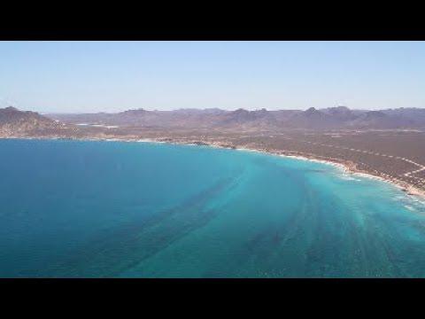 El único arrecife del Golfo de California