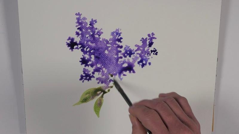 Une branche de lilas à l'aquarelle watercolor tutorial