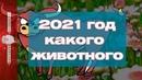 2021 год какого животного по восточному календарю - ГОД БЫКА