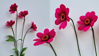 How To Make Chocolate Cosmos Paper Flower / Paper Flower / Góc nhỏ Handmade