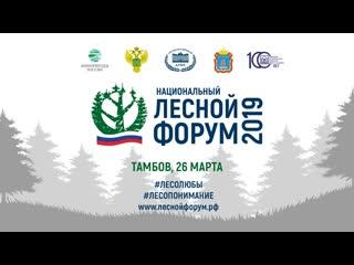 Национальный лесной форум в Тамбове, панельная дискуссия