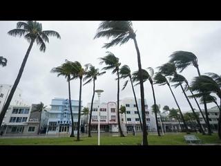 США. Работаю в ураган. 9000000 спасённых животных. ШОППИНГ.