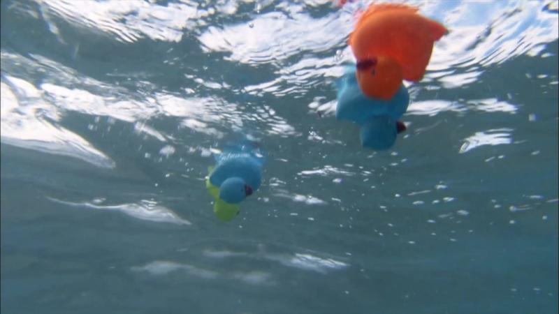 BBC Земля Мощь Планеты серия 4 Океаны 2007