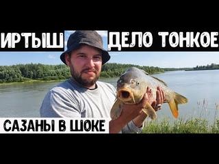 Рыбалка на сазана июль 2021 (сазаны в шоке)