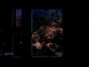 FLAER SMIN - Alone In The Dark (HQ Sound, 4K-Ultra-HD) d46bs