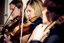 Фотоальбом Трио Живая музыки