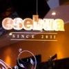 ART-cafe esebua