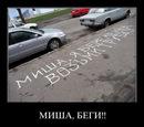 Фотоальбом Мишы Передерия