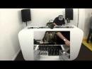 DBTV LIVE 184: Chroma and DJ Kwaii