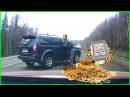 Цыганский развод на дорогах / Gypsies on the roads АвтоСтрасть