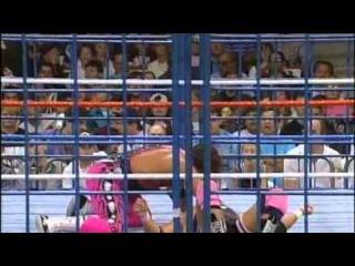 Bret Hart Vs Owen Hart Steel Cage Match WWF Championship