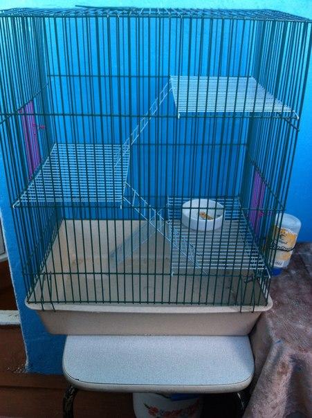 Аля Продажина: Клетка для крысика, вместе с поильником, керамической миской, также дам начатый большой пакет циликогелевого наполнителя и совочек, все 700 р