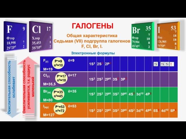№ 199. Неорганическая химия. Тема 24. Галогены. Хлор. Часть 1. Общая характеристика галогенов