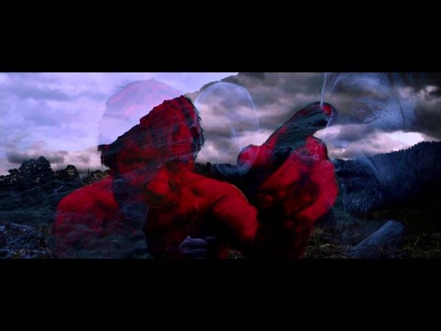 Вальгалла: Сага о викинге (фан-видео)