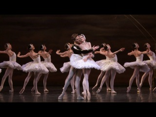 Swan Lake | 2016 | The National Ballet of Canada