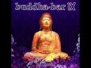 Buddha Bar IX - Karma Busta Rythm - DJ Ravin