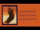 Неизвестные Животные Планеты Земля 046 - Олгой-Хорхой (Монгольский Червь Смерти)